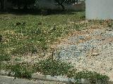 Comprar Terrenos / em Condomínios em Sorocaba apenas R$ 300.000,00 - Foto 3