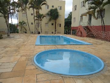 Alugar Apartamentos / Apto Padrão em Sorocaba apenas R$ 850,00 - Foto 16