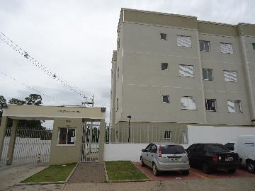 Alugar Apartamentos / Apto Padrão em Sorocaba apenas R$ 790,00 - Foto 1