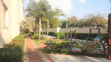 Comprar Apartamentos / Apto Padrão em Sorocaba apenas R$ 250.000,00 - Foto 12