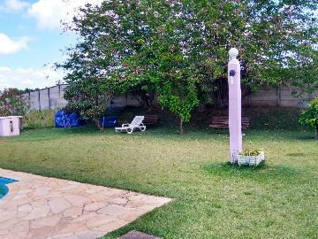 Alugar Rurais / Chácaras em Araçoiaba da Serra apenas R$ 1.500,00 - Foto 14
