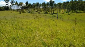 Comprar Terrenos / em Bairros em Sorocaba apenas R$ 150.000,00 - Foto 2
