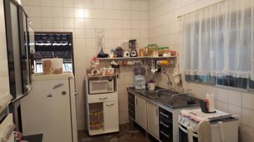 Comprar Rurais / Chácaras em Araçoiaba da Serra apenas R$ 375.000,00 - Foto 4