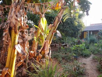 Comprar Casas / em Bairros em Sorocaba apenas R$ 245.000,00 - Foto 22