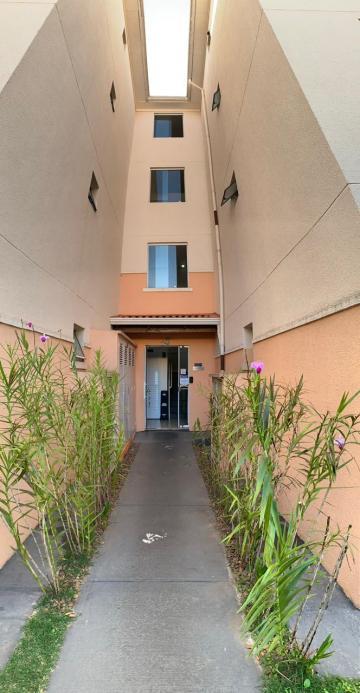 Votorantim Condominio Villa Flora Apartamento Locacao R$ 950,00 Condominio R$260,00 2 Dormitorios 1 Vaga